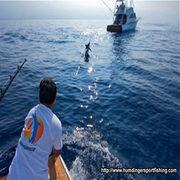 Enjoy Kona Deep Sea Fishing